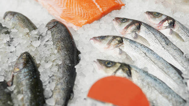 frozen fish in boxes in supermarket or store
